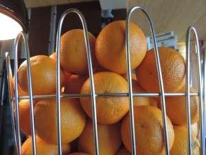 Frische Orangen am Frühstücksbuffet
